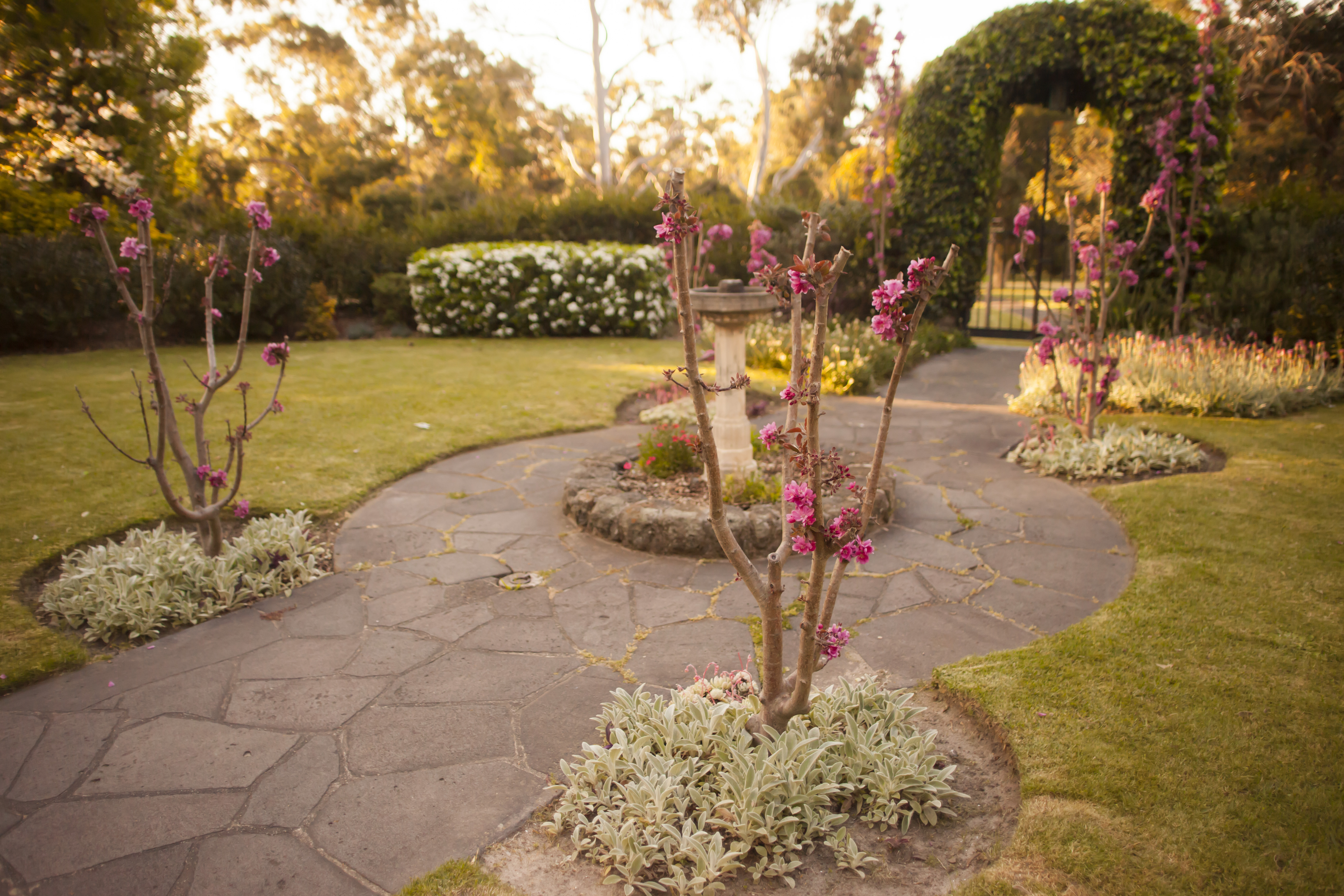 Wattles Garden Park Reviews Garden Ftempo